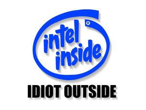 Intelinsideidiotoutside_1
