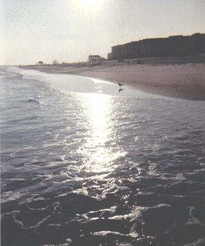 Orange_beach